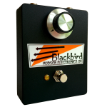 Blackbird-trans